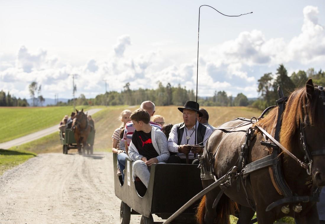 Gamle_Hvamsdagen_2018_hestekjring_invertert.jpg
