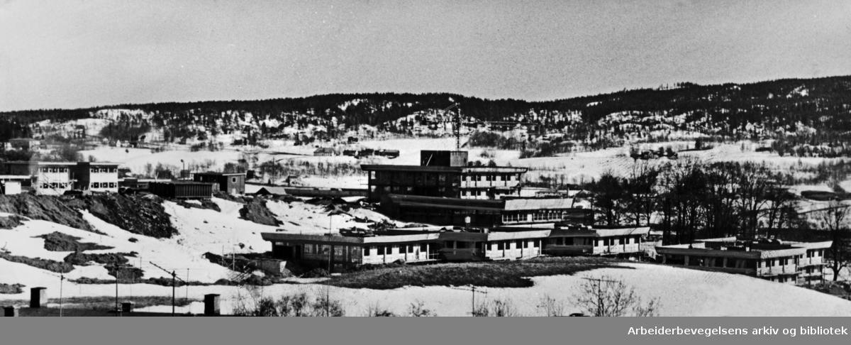 Bredtvet. Statens skole for talehemmede og de fem internatene. April 1966