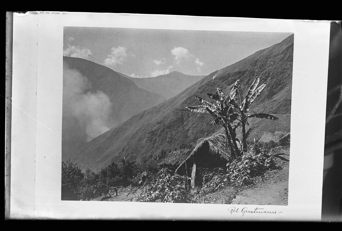 """Reprofotografi av en bild föreställande berg. I förgrunden syns byggnader med grästak och brevid dessa står palmer. Bilden är signerad Rob. Gerstmann. I Harald Olssons anteckningar står det """"27 rep. för Folke Olsson""""."""