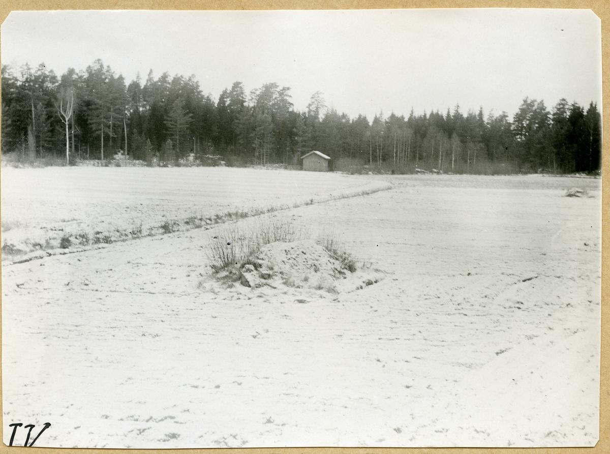 Fläckebo sn, Väster Vrenninge.  Rönsmyran (platsen kallas även Harkiln). En nyodling av Anders Jansson år 1826.