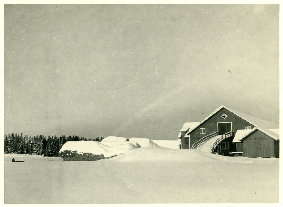 Haraker sn, Svanå.