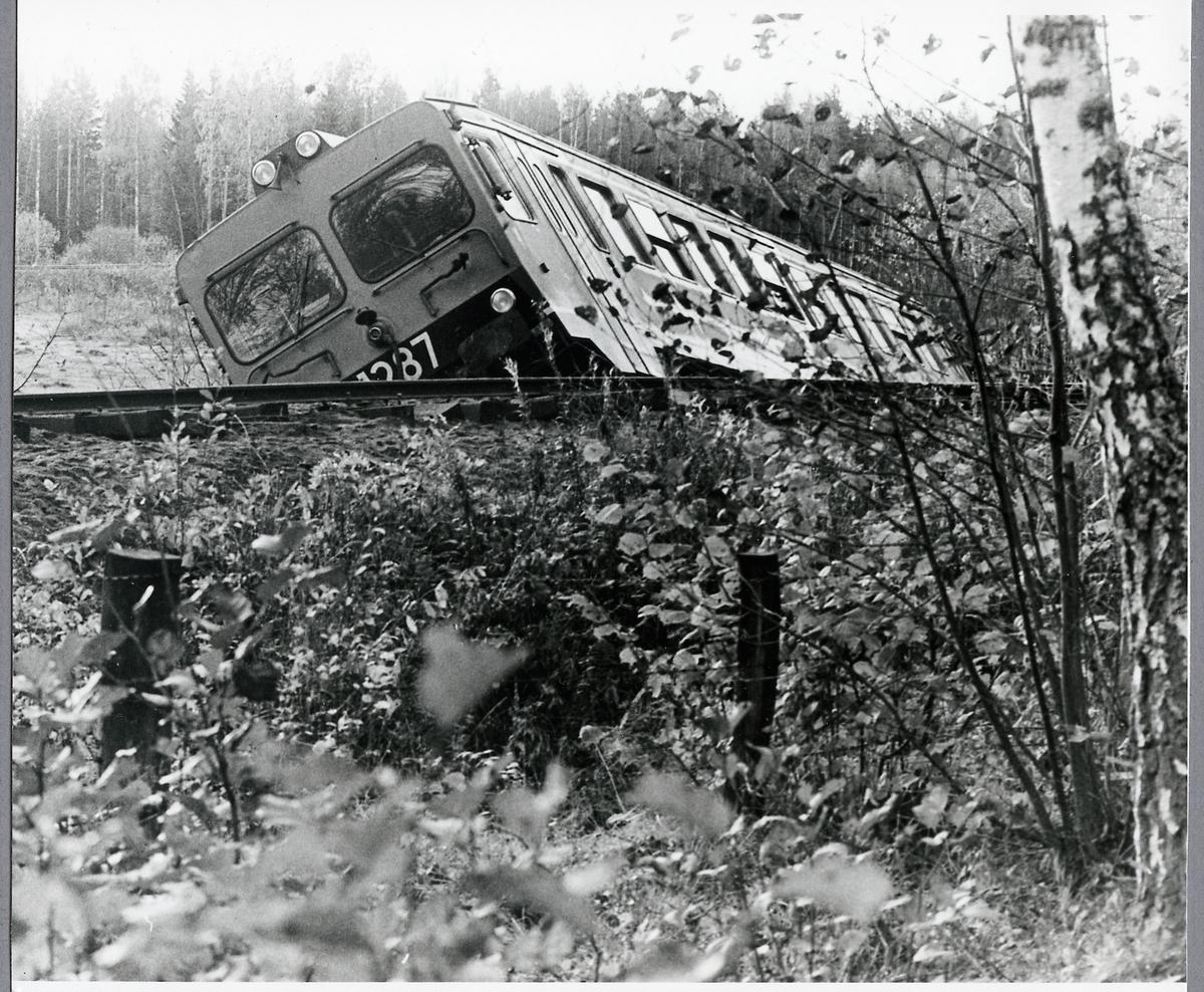 Urspårning i Hultsfred efter påkörning av kor. Statens Järnvägar, SJ Y1 1287.