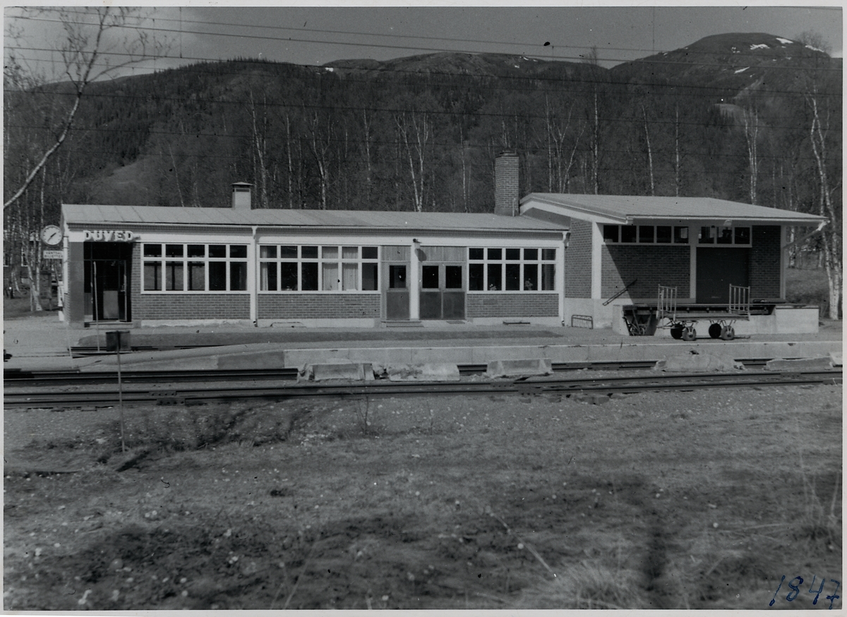 Duved station.