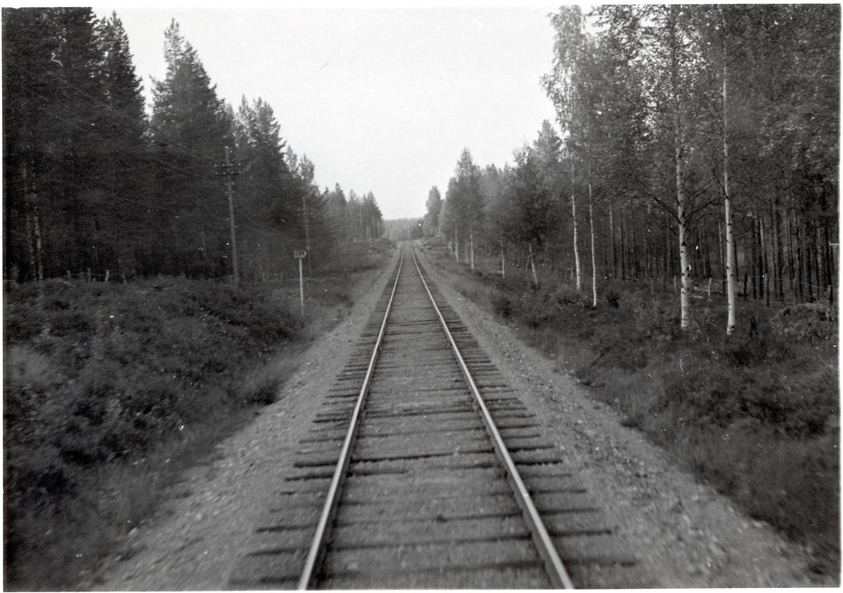 Vy över järnvägsspåret på sträckan mellan Skålmo - Torgåsmon. Kilometerskylt 234.