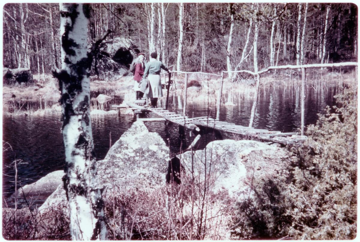 Bäck mellan Långsjön och Häglingen.