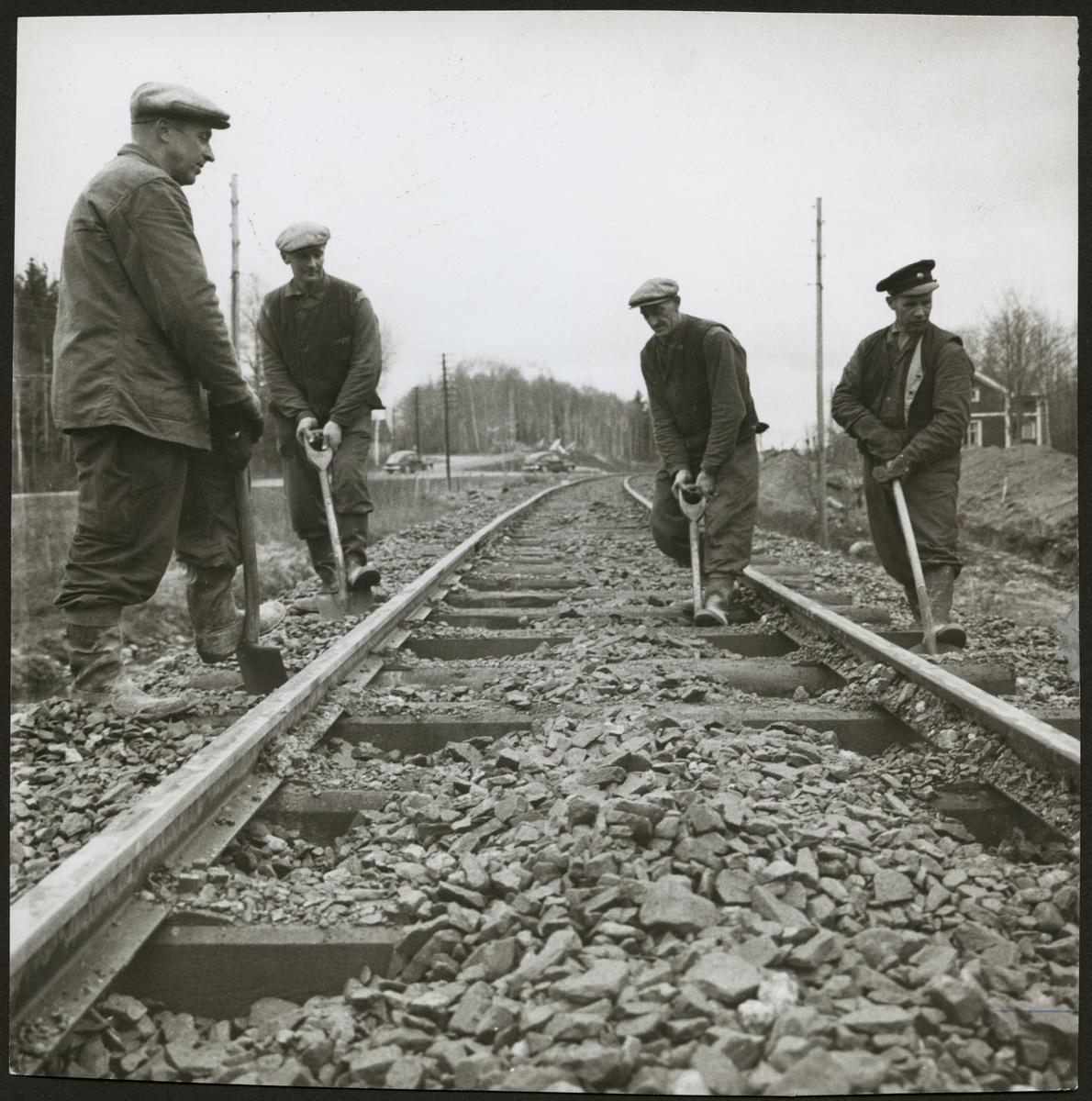 Arbetare vid järnvägsspåret mellan Storå och Stråssa som upprustas 1958.