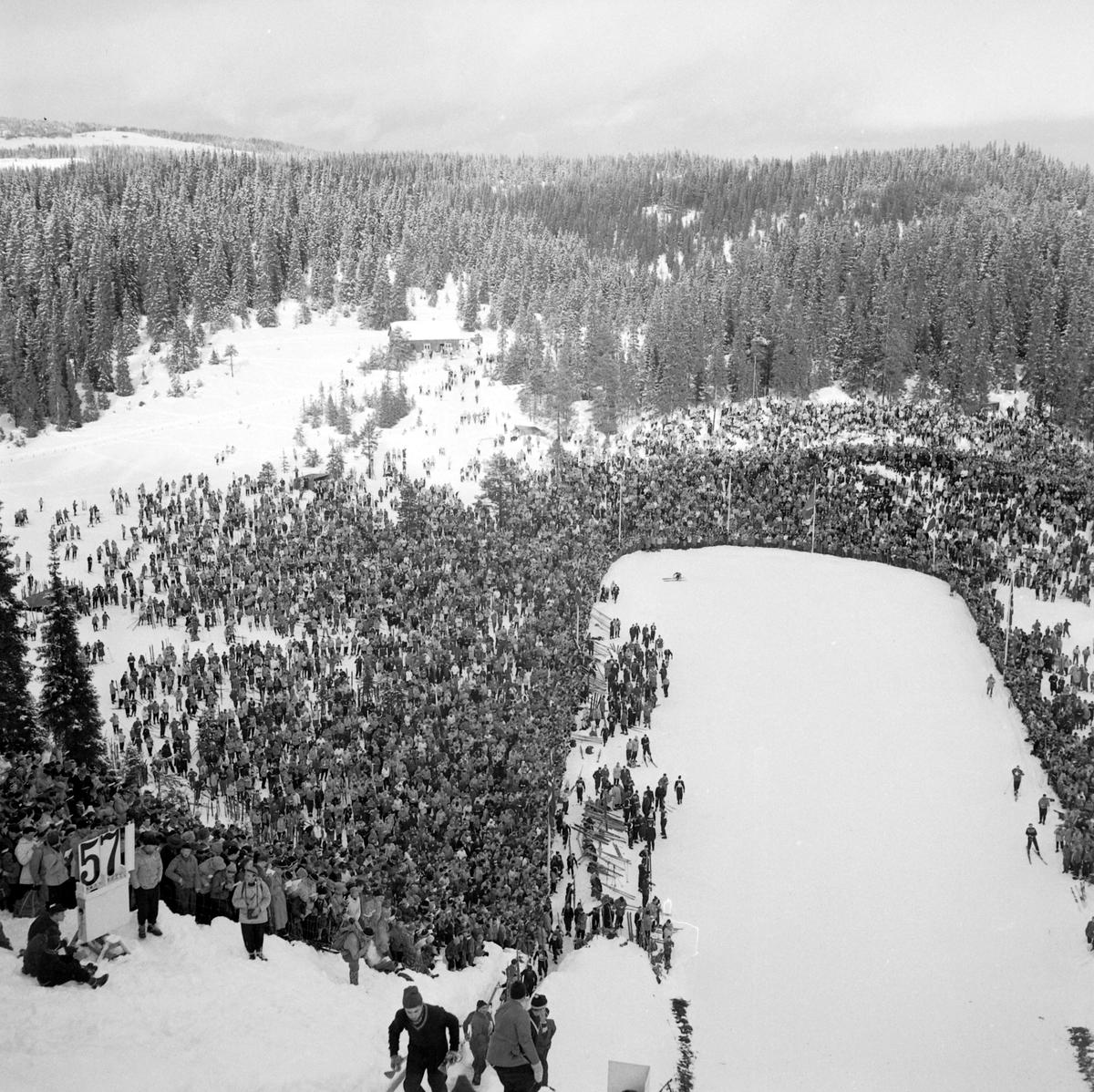 Hopprenn i Granåsen under NM på ski
