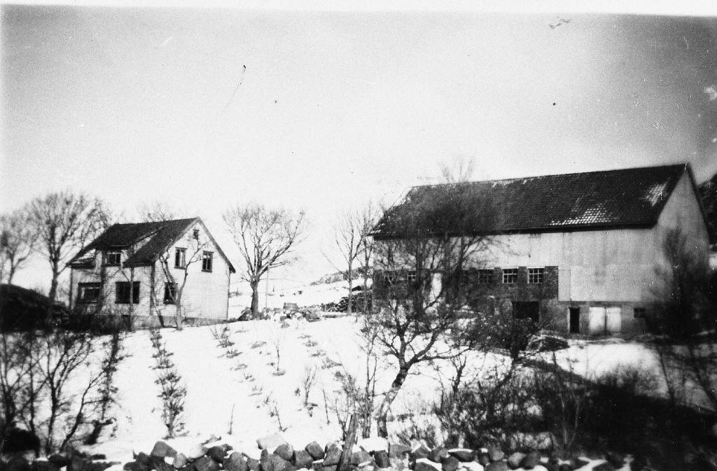 """Heimahus og uthus på på garden """"Hagen"""", Fjermestad. Heimahuset brann 1963."""