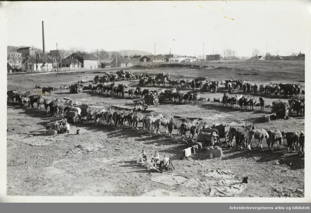 Tyskerne slår leir med hester og utstyr våren/sommeren 1940. Strømsveien og fyrstikkfabrikken til venstre. Bildet er tatt fra blokka Etterstad 1.