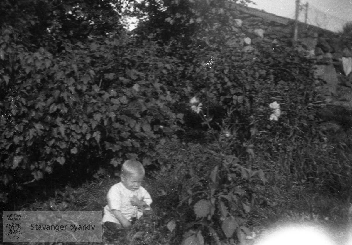 Liten gutt i hagen