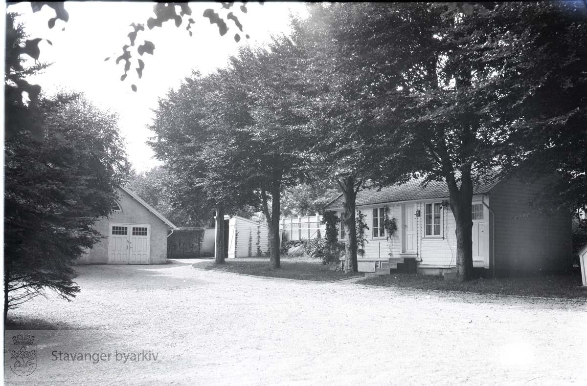 Gårdsplass med trær og hus