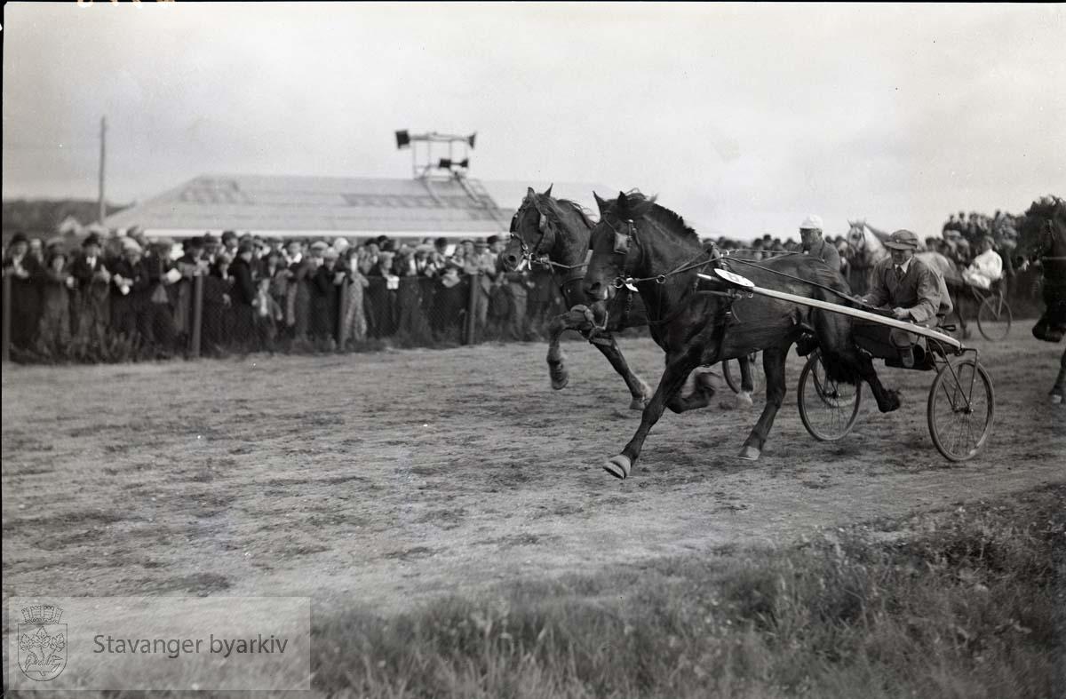 Hester og kusker i travløp på banen. .Tilskuere langs banen.
