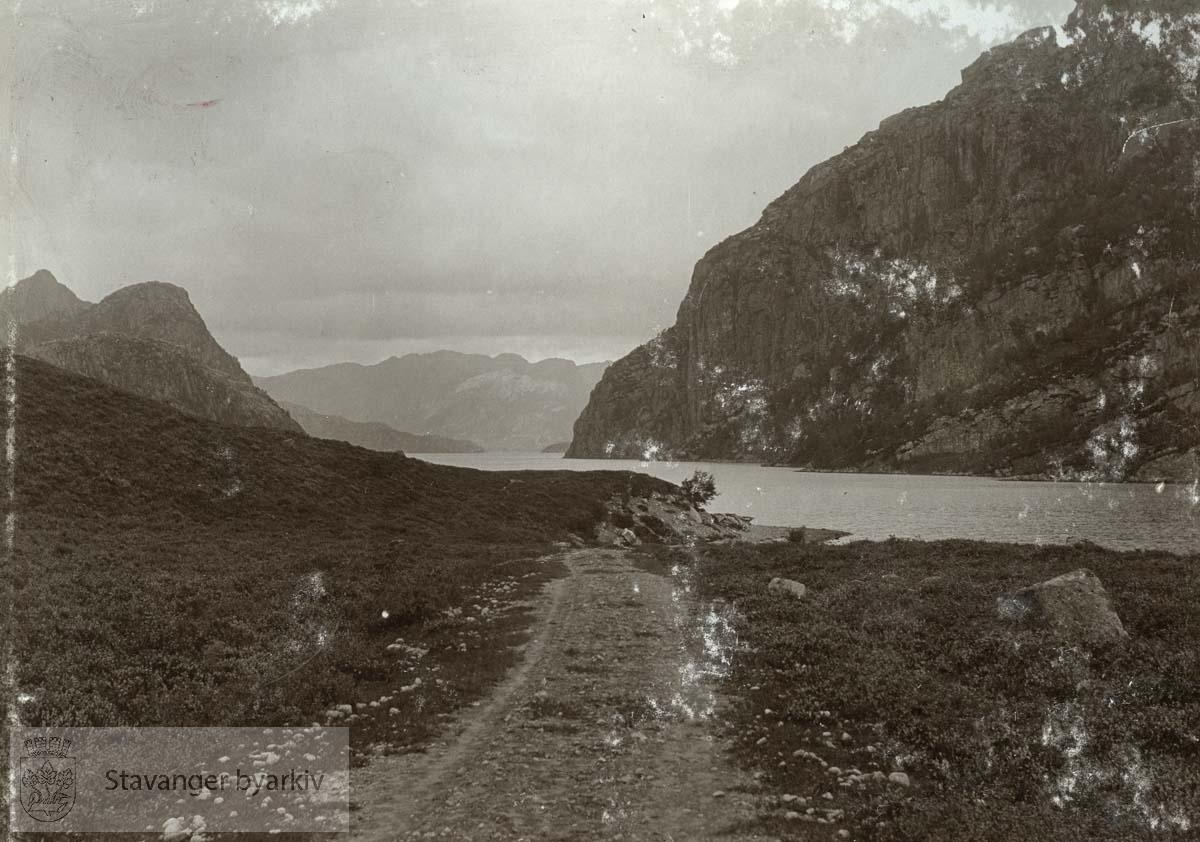 Landskap fra Birkeland