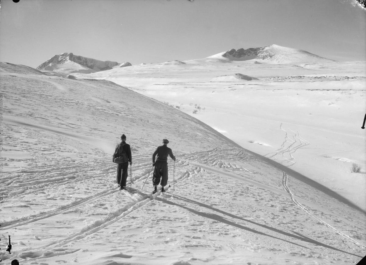 Dovrefjell, to på skitur mot Snøhetta