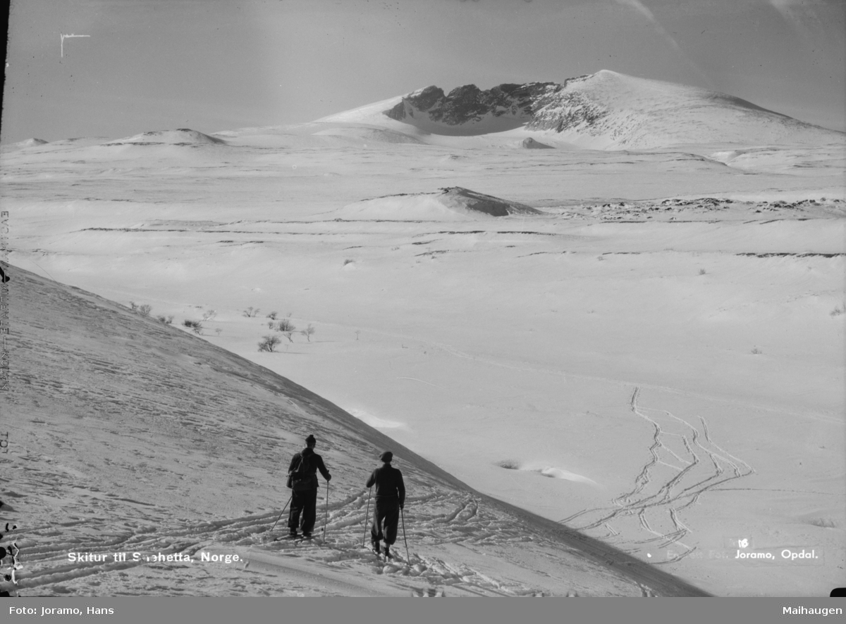 Dovrefjell, to på skitur mot Snøhetta. Påskrift Skitur til Snehetta, Norge