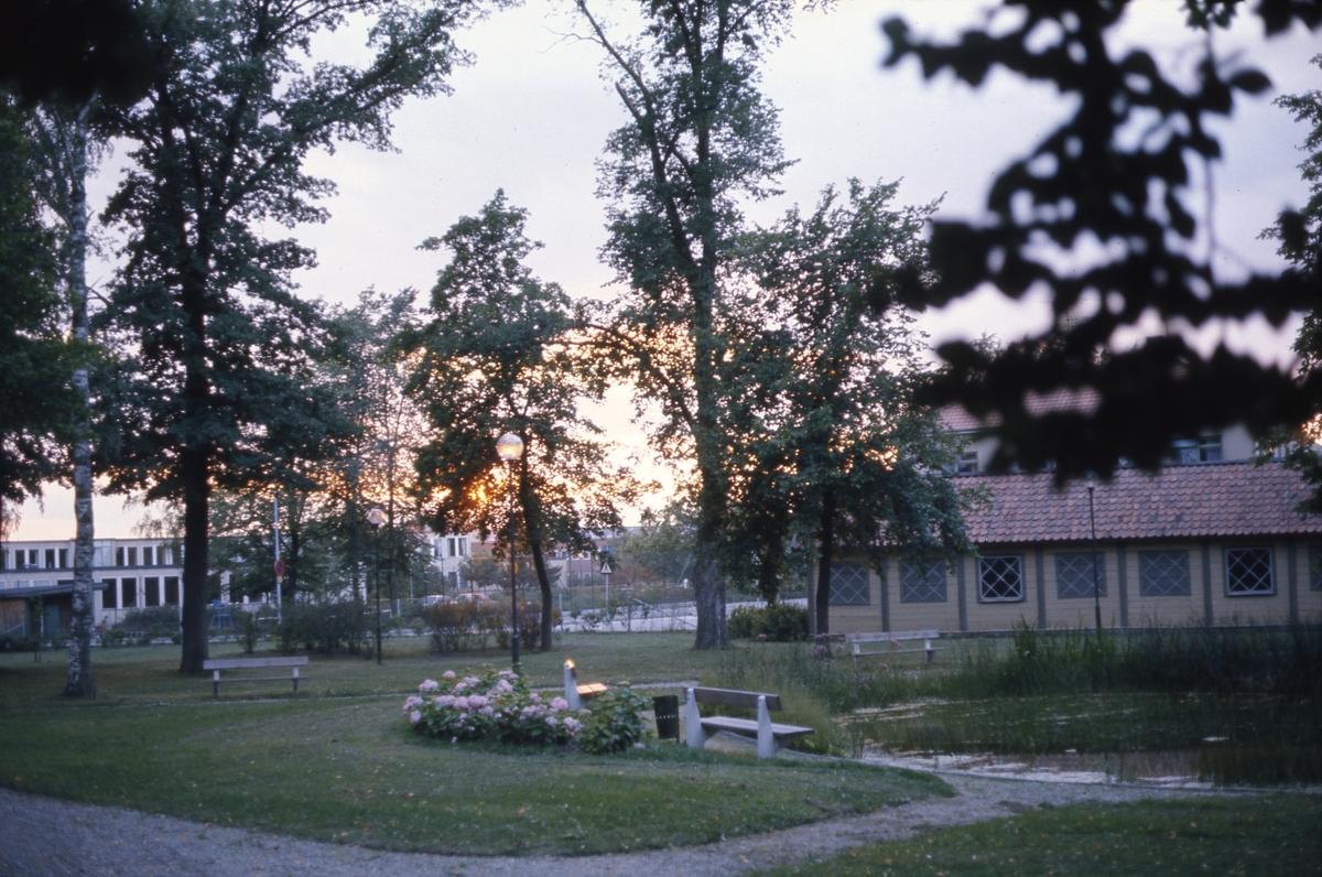 Olof Ahllöfs park med damm och kägelbana. Stureskolan skymtar i bakgrunden, till vänster.