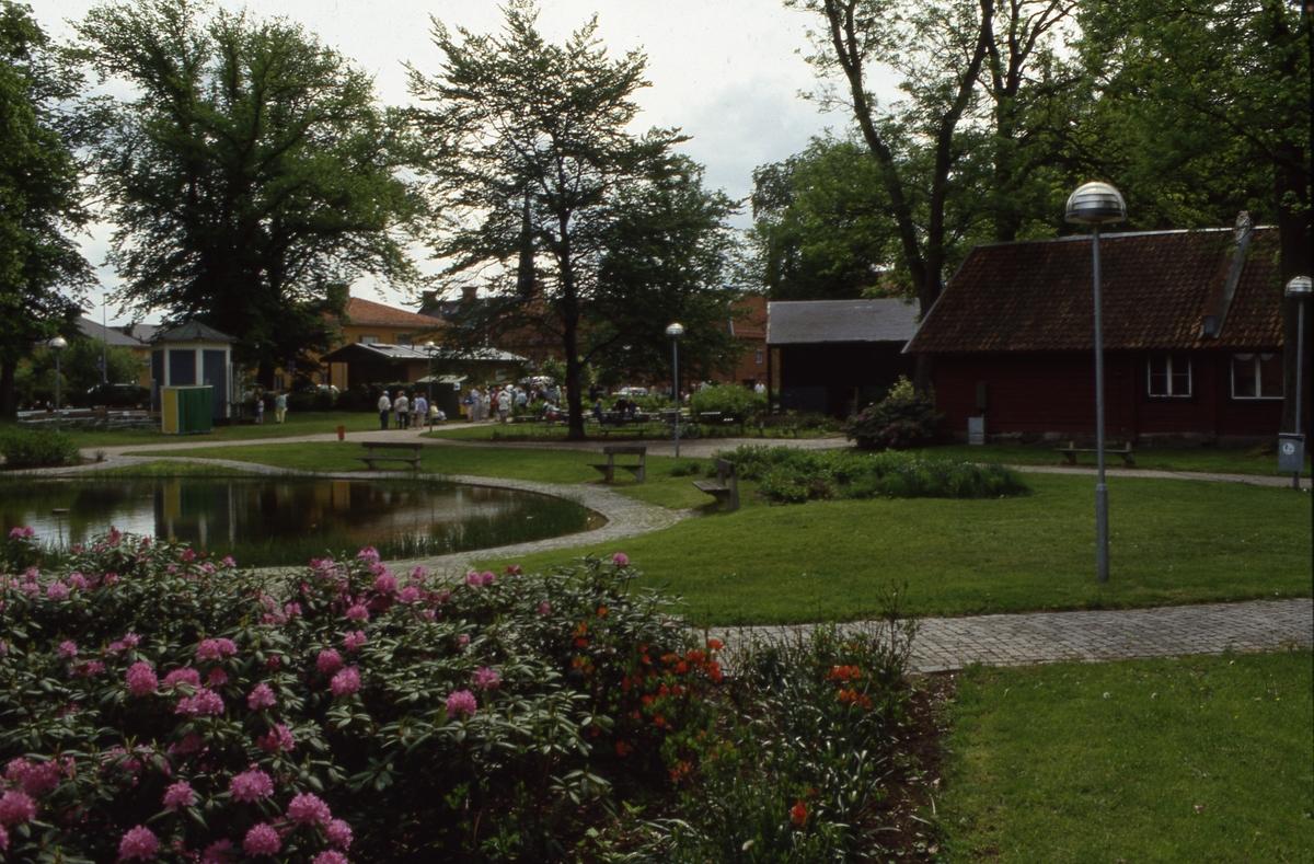 Aktivitet i Olof Ahllöfs park. Rhododendronbuskarna blommar. Bakom dammen syns lusthuset.
