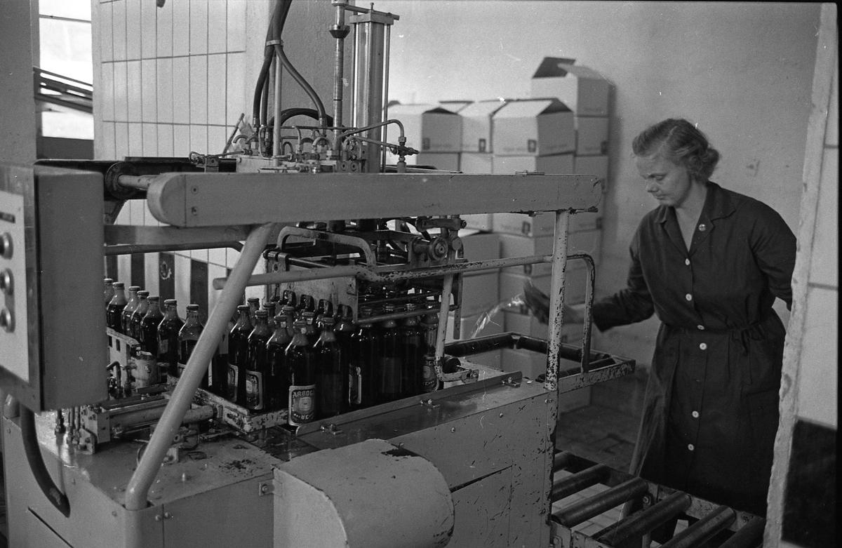 Arboga Bryggeri, interiör. Det är premiär för mellanölet. Fyllda ölflaskor åker på ett löpande band och ska packas i lådor. En kvinna, iklädd arbetsrock, övervakar. Kvinnan är fru Bergström.  Anläggningen var färdigbyggd 1899 och verksamheten startade 1 november samma år. 24 oktober 1980 tappades det sista ölet, på bryggeriet. Märket var Dart. Läs om Arboga Bryggeri i hembygdsföreningen Arboga Minnes årsbok 1981