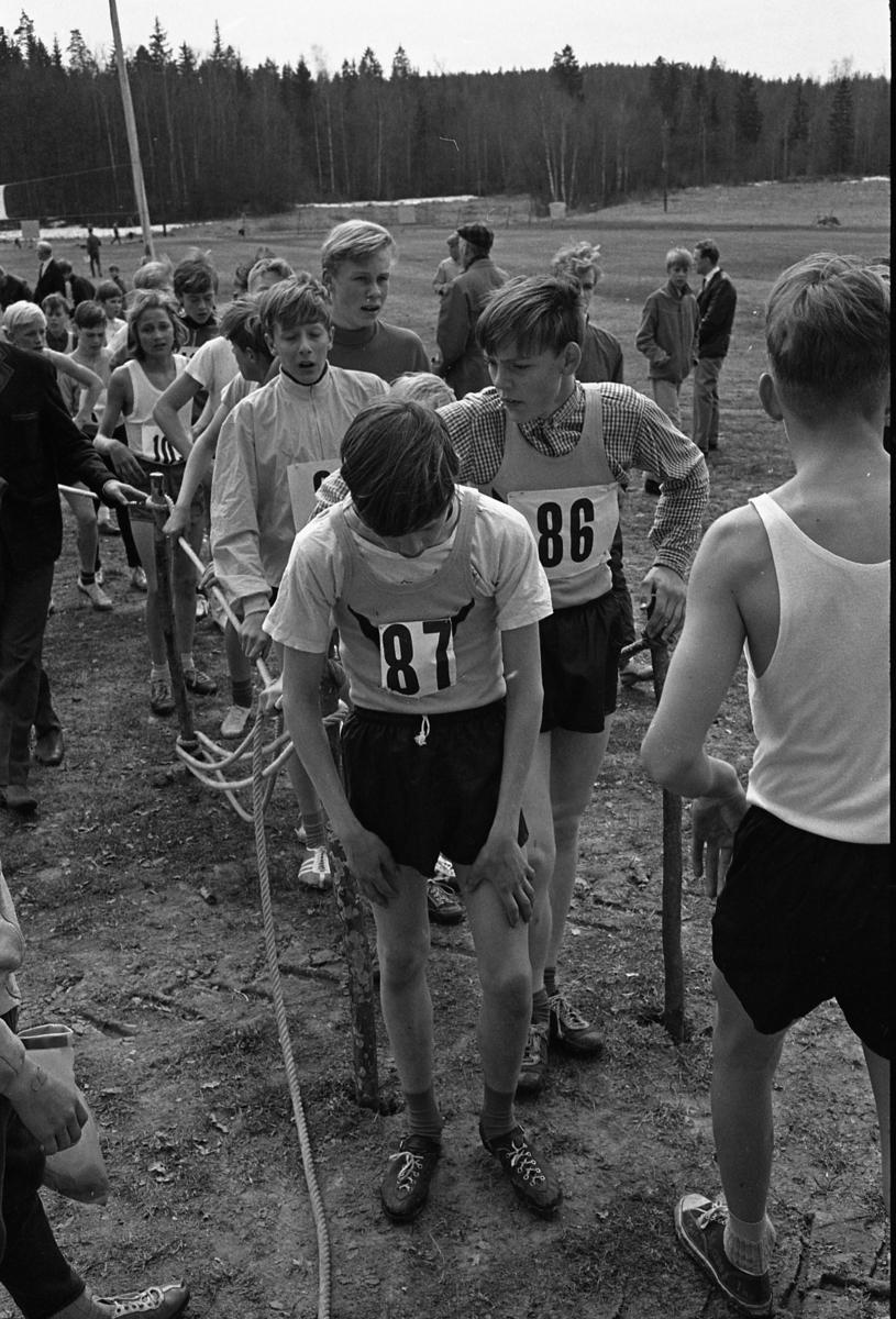 Ungdomsmästerskap i terränglöpning Målfållan är full av trötta ungdomar med nummerlappar på bröstet. Skogen ses i bakgrunden.