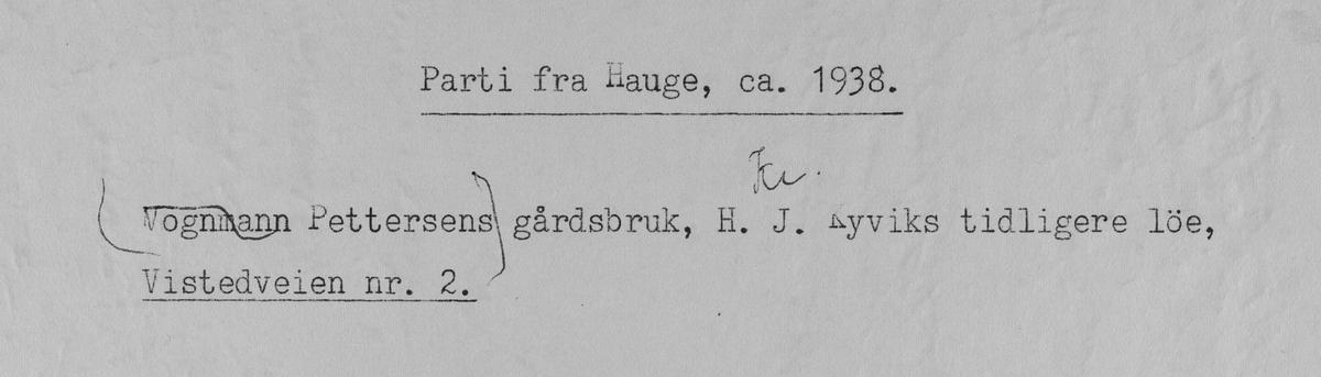 Parti fra Hauge, ca. 1938.