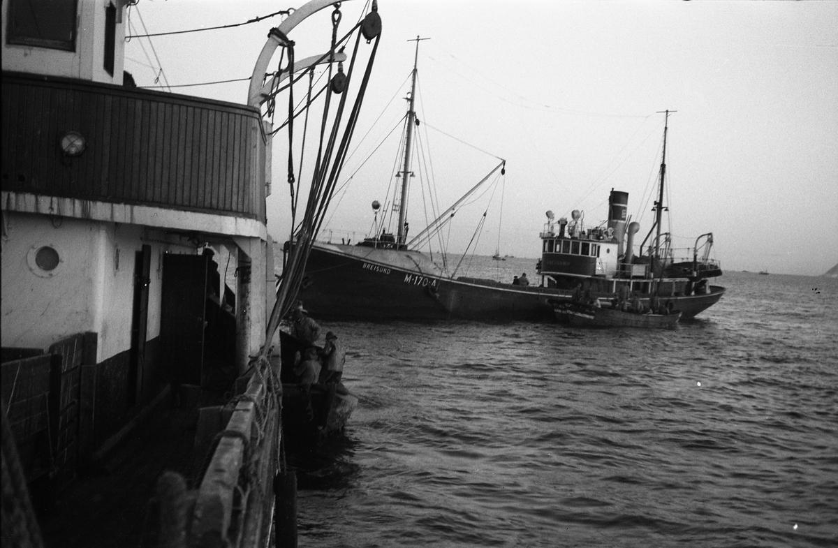 Serie på 24 bilder fra et fiskefelt, trolig sildefiske med not. Bildene er tatt av en person ombord i ei skøyte, og viser ulike faser i fangstprosessen. Hvor bildene er tatt er ukjent. Ingen av personene, er identifisert.