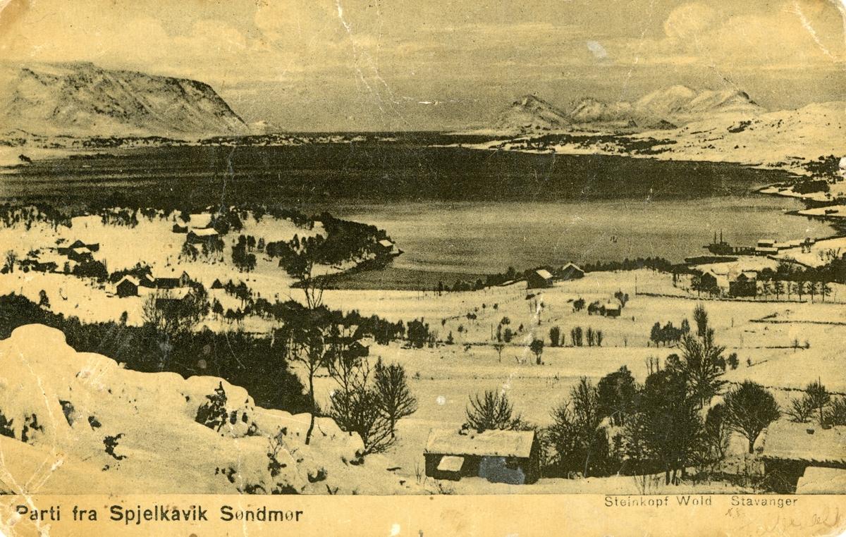 Oversiktsbilde av Spjelkavika med Åsefjorden i vinterdrakt.