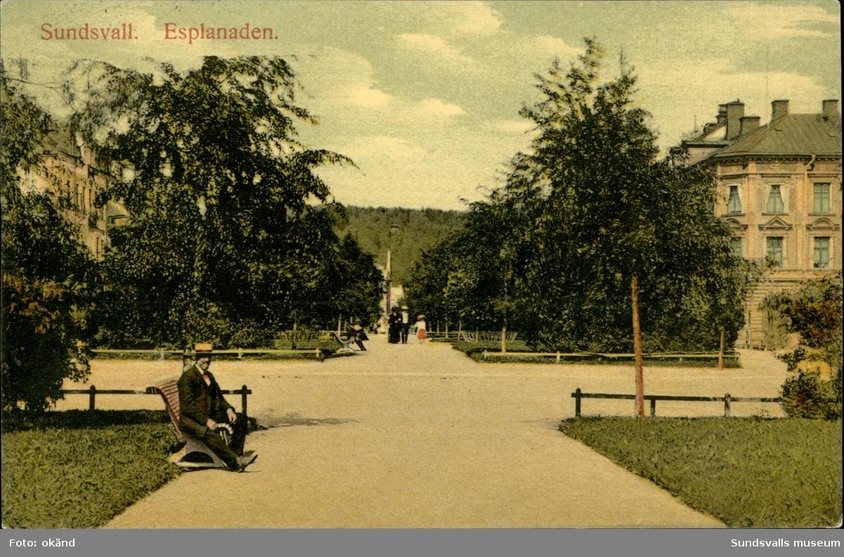Vykort med motiv av Esplanaden i Sundsvall.