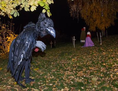 En svart ravn danser rundt som en skjebnefugl. (Foto/Photo)