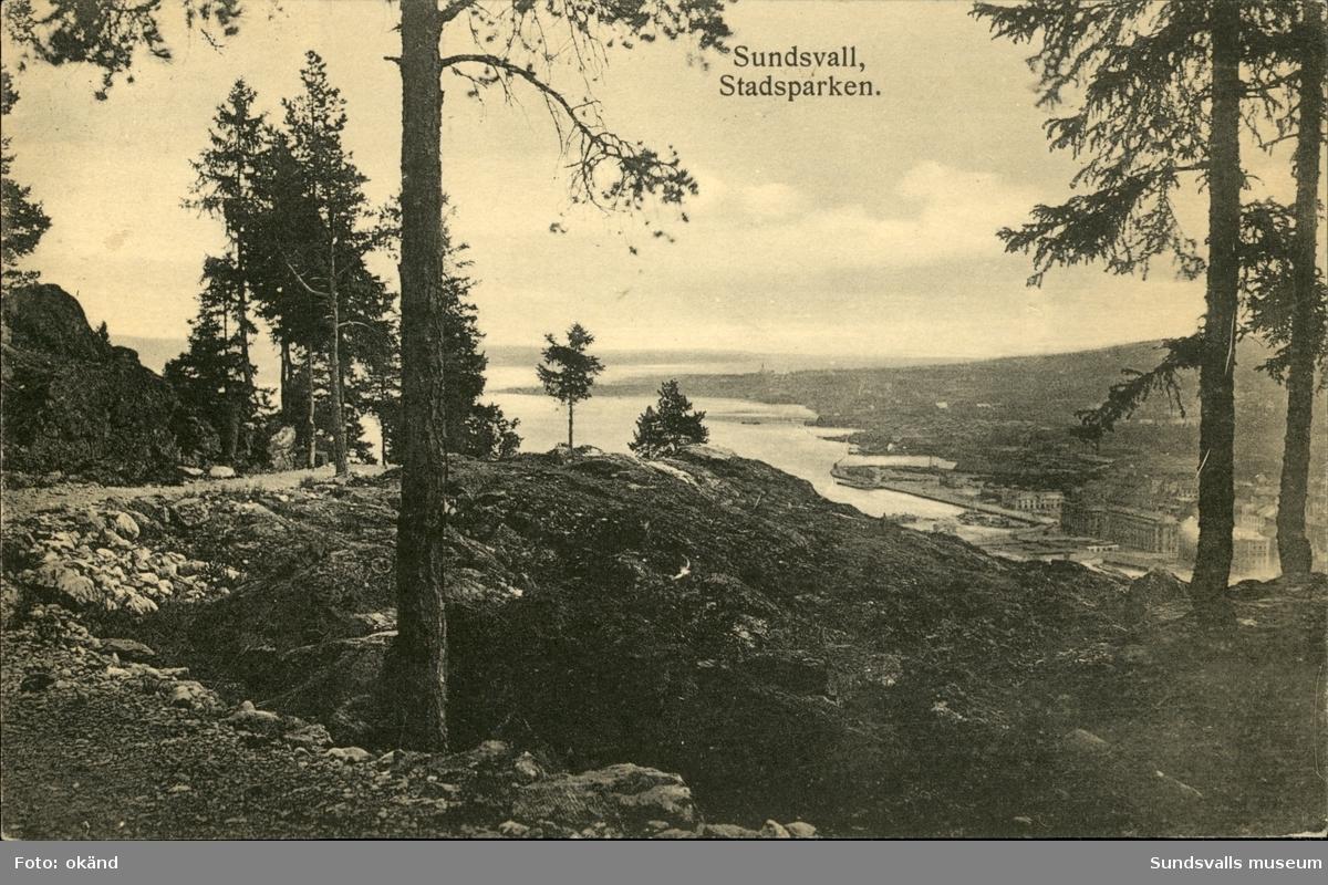Vykort med motiv över hamnen från stadsparken i Sundsvall.