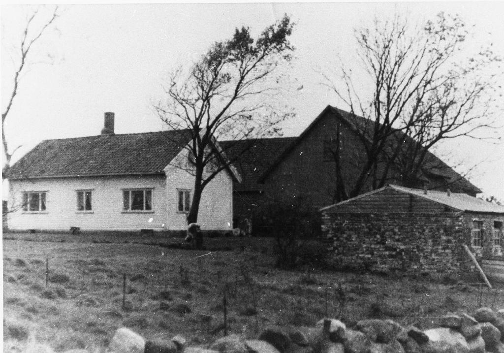 Husa på garden til Jens A. Ree (1877 - ) bygd i 1902. Det vart påbygd og forandra først i 1950 åra. Gunnar Line var med og bygde i 1902. Han vart seinare gift med dotter i huset, Lisa Ree (1890 - )