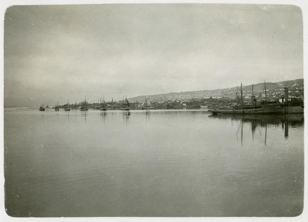 Förmodligen en kuststräcka i Norge i närheten av Tromsö. Det första ångfartyget till höger bär namnet St Cyrus.