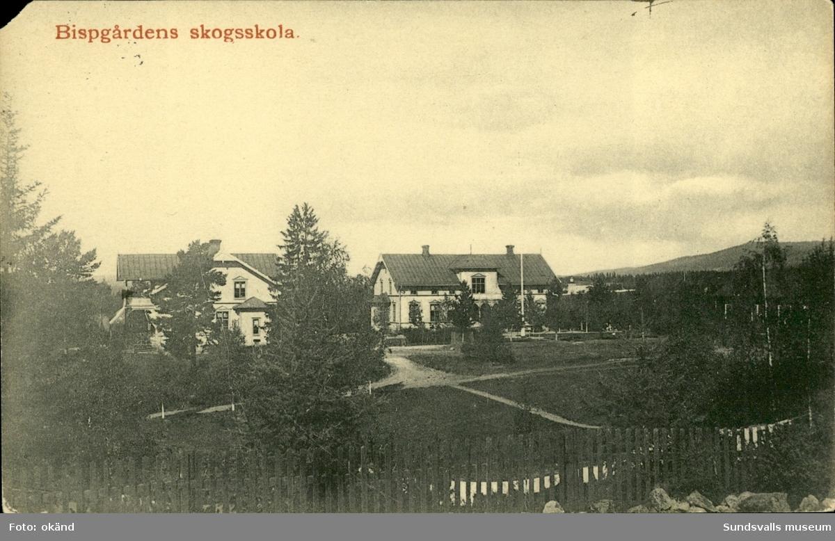 Vykort med motiv över skogsskolan i Bispgården.