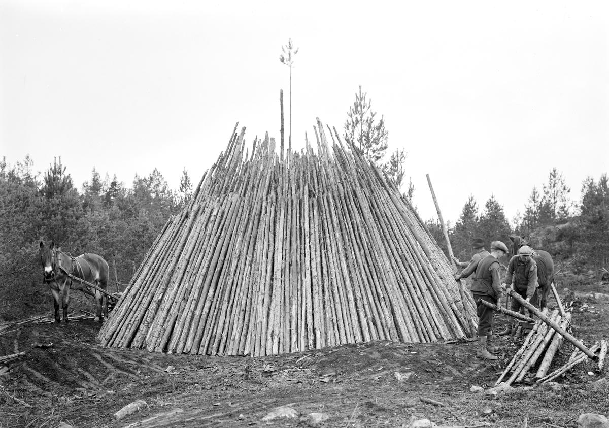 Resmilans inre står snart klar. När den vidare täckts med jord, torv och sand, tänds milan och förkolningen sätts igång. Just denna restes i Österås kronopark i Svinhult socken 1921.