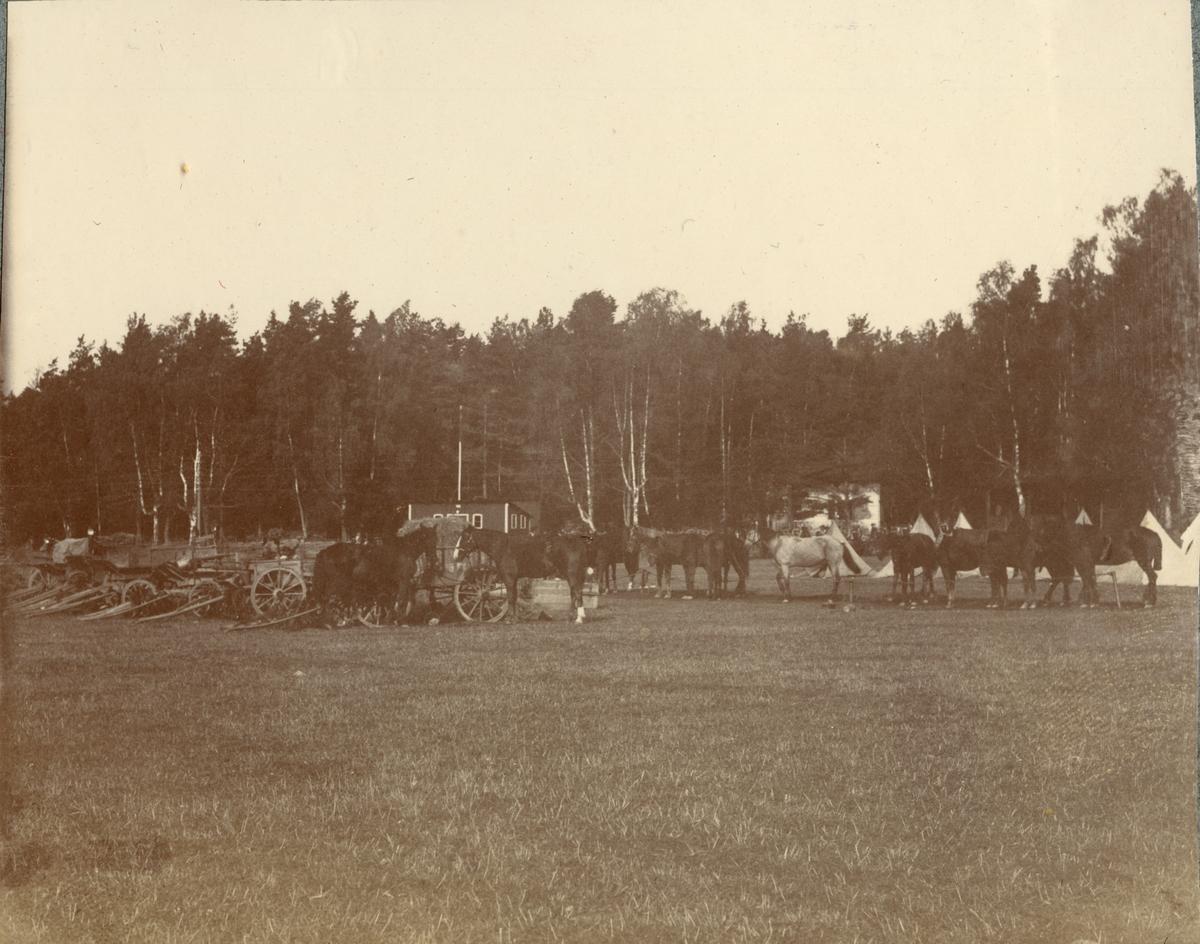 Hästar framför tältläger, Fortifikationen.
