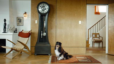 RAGNAR KJARTANSSON, Scenes From Western Culture, Dog and Clock, 2015. Single-channel video with sound. 19 minutes. Edition of 6 plus 2 artist's proofs. Courtesy of the artist, Luhring Augustine, New York and i8 Gallery, Reykjavik.