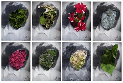 assne_med_blommor.jpg