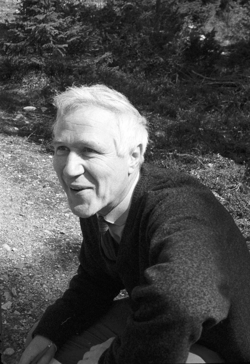 Kjell Aukrust