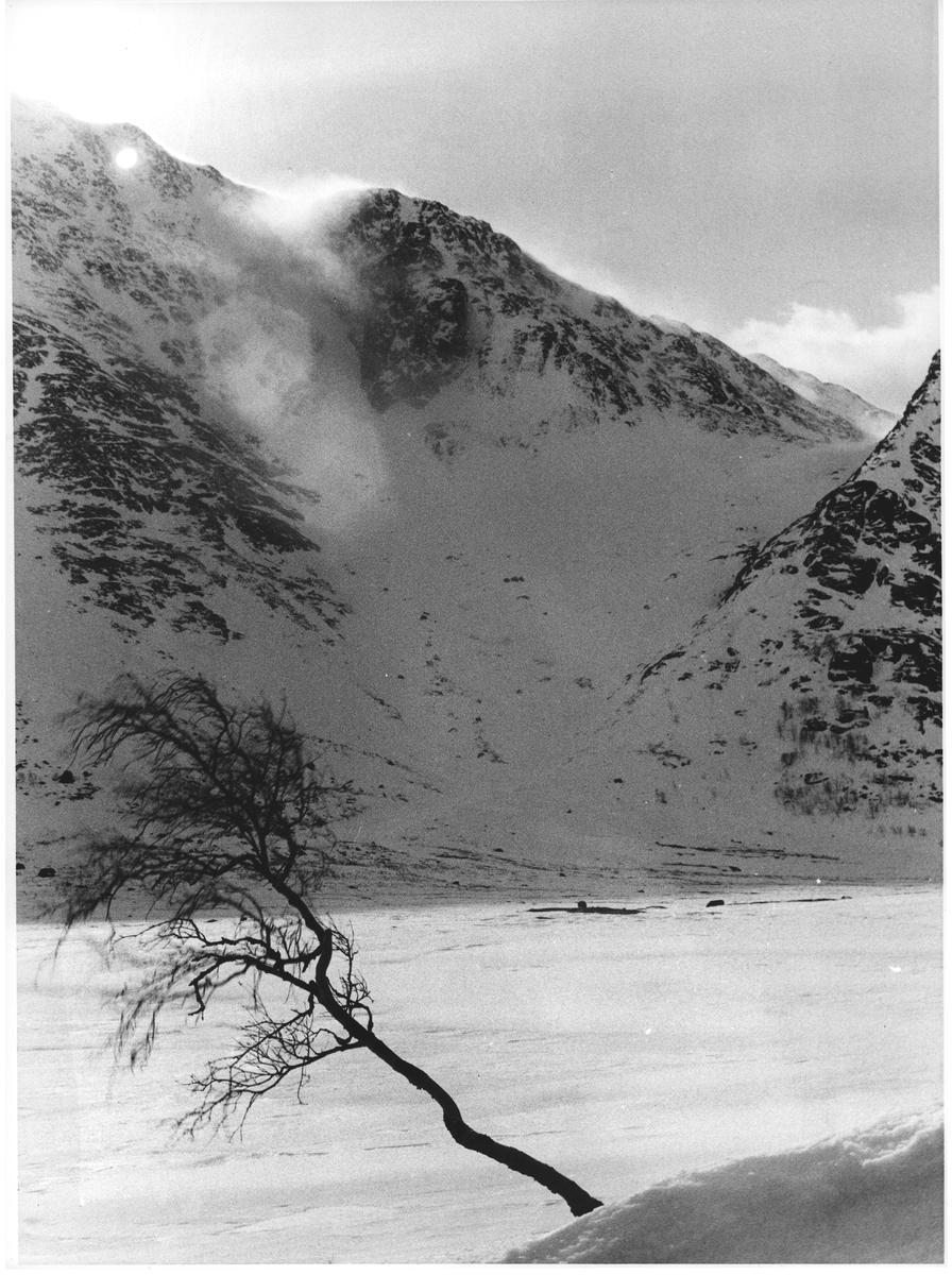 Stormen hyler over Bukkehåmåren (1905 moh) v/ Gjende. Påsken