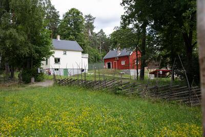 Finnmarksplassen med bolighuset fra Olderfjord og fjøset fra Indre Billefjord. (Foto/Photo)