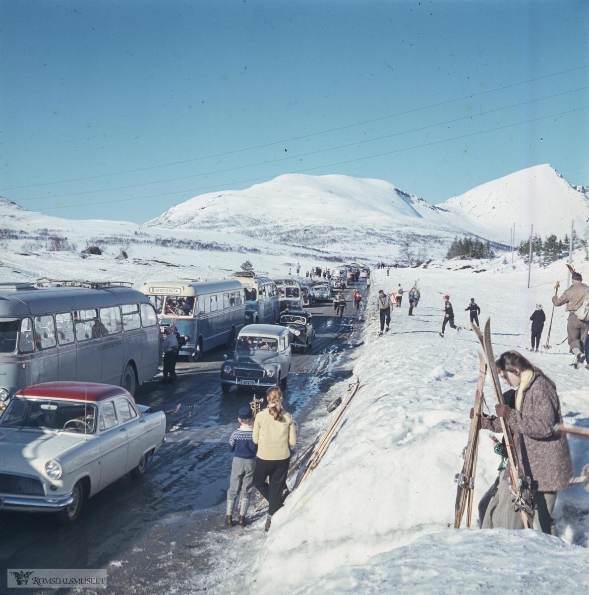 Ørskogfjellet..Mange fra Ålesundområdet reiste dit når det var gode forhold for skitur. Bussene er sannsynligvis fra 1950-tallet og det er få personbiler å se. Folk var mer avhengig av buss den gangen. Den fremste bussen, grålakkert, tilhørte Vestnesruten, som hadde ruter Ålesund-Vestnes i korrespondanse med fergene til og fra Molde. De neste to bussene tilhørte Skodjeruta som hadde busser lakkert i blått og gult. Den første av disse to minner om T-1042, 1955-modell, som er bevart og eksisterer som veteranbuss.
