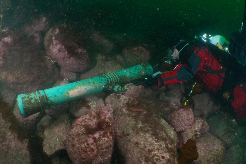 En dykker inspiserer enden av en kanon under vann. Kanonen har tilnærmet turkis farge, og er stedvis begrodd med rødbrune flekker. Et hvitt parti på siden av kanonen er også synlig. Kanonen ligger på en steinur under vann. Steinene har rødlig farge, og det er flere sjøstjerner samt en fisk synlige i bildet. (Foto/Photo)