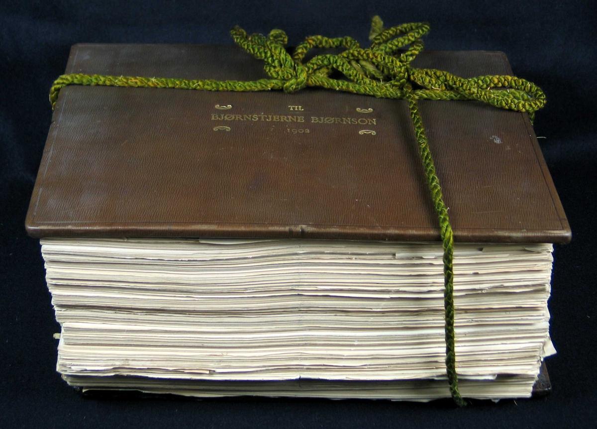 Flere hundre lister med navnetrekk, stilling og bopel. Holdt sammen med to grønne skinntrukne plater og tvunnet silkesnor. Hvitt ripsbånd festet i nederste plate spendt over papirbunken. Gullskrift på øverste platen.