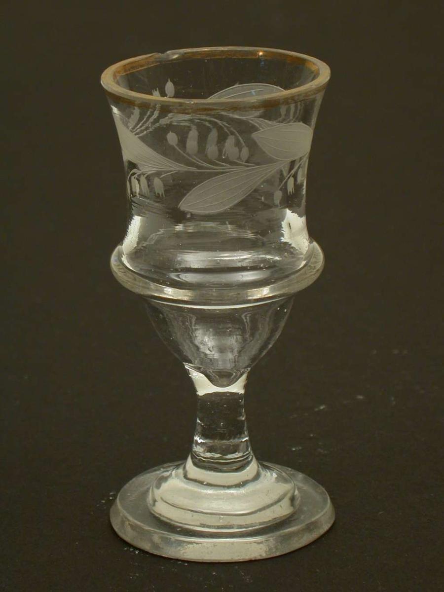 Brennevinsglass med en ring rundt klokken. Over ringen er klokken gravert med en løpende blomsterkrans. Det er rester etter forgylling på randen av klokken. Det er små hakk i randen.