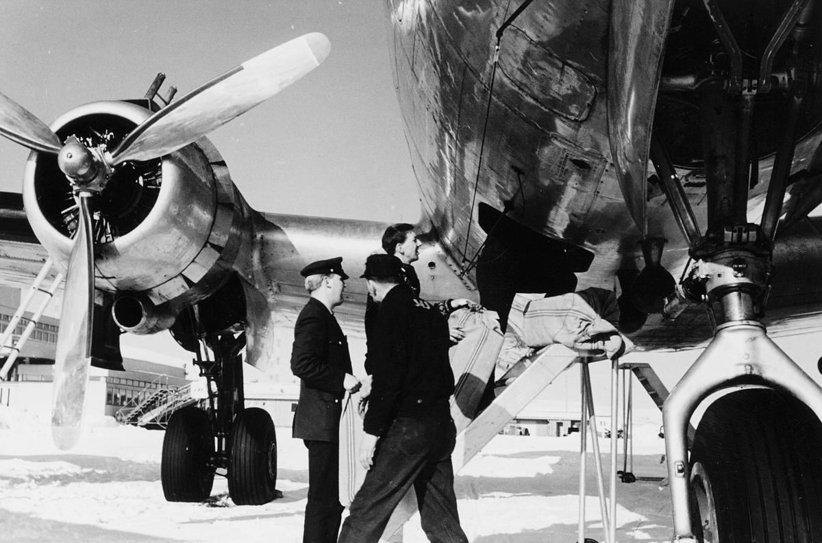 transport, fly, eksteriør, på bakken lasting, menn