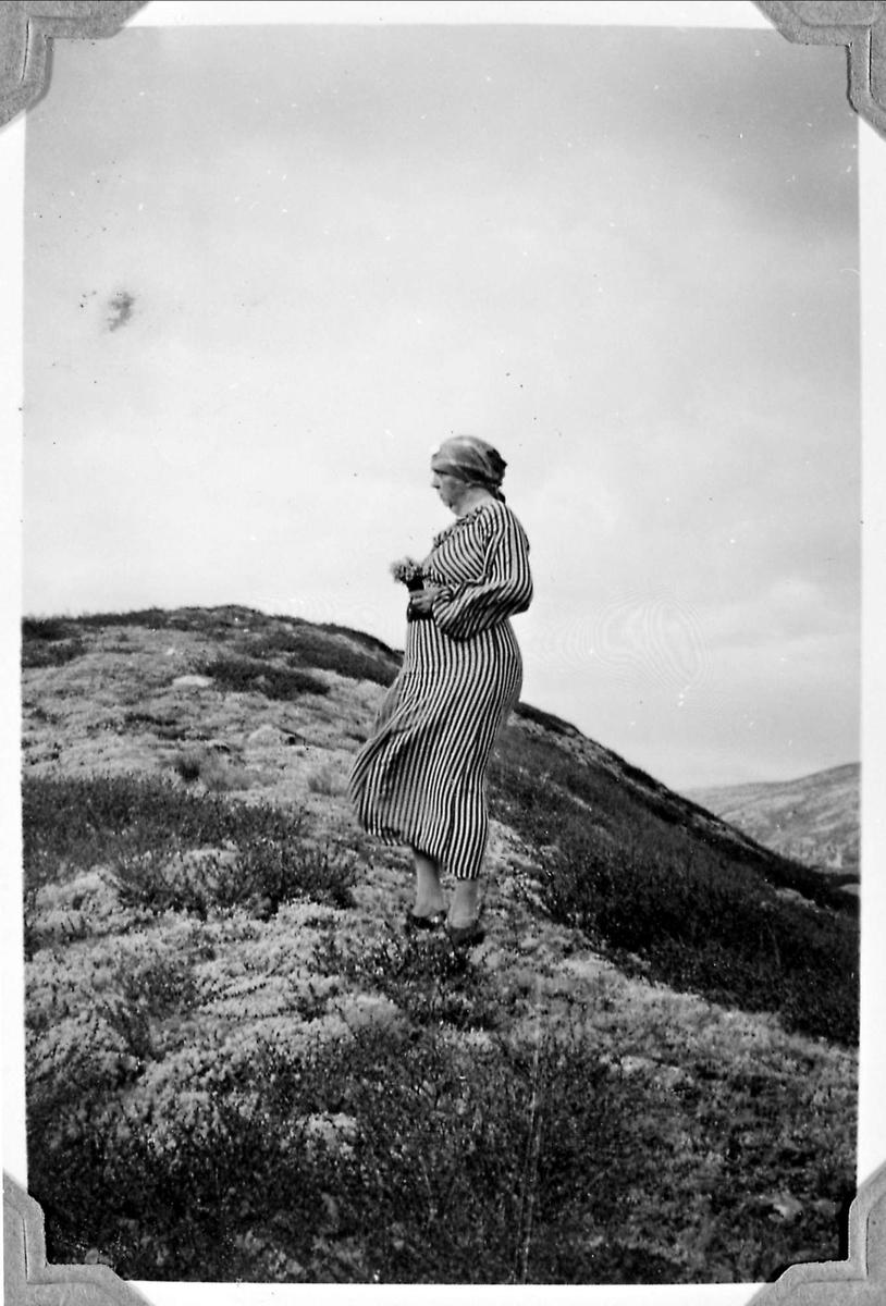 Fjelltur, fjell, kvinne