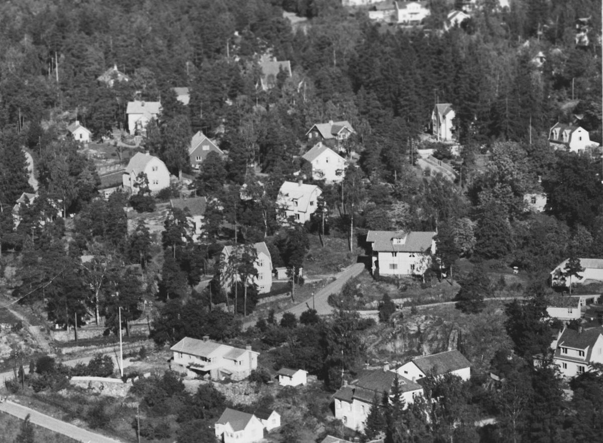 Flyfoto. Del av sætreskogen.