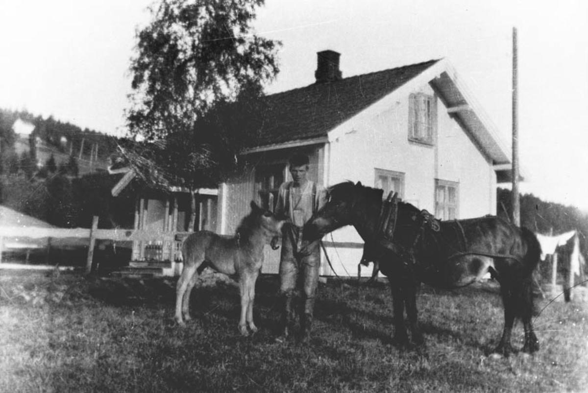 Johan Hvalstrand og Mørejarlen og et føll foran gamlehuset på Sørby.