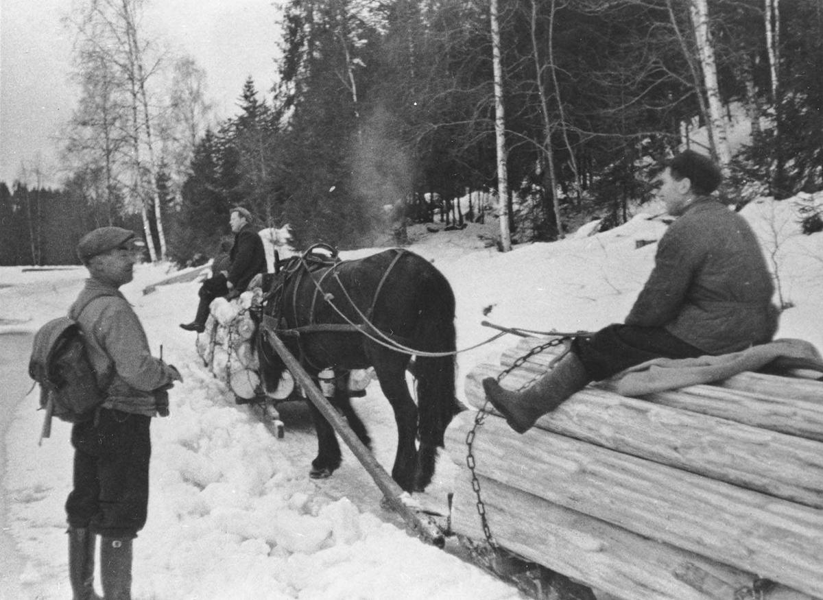 Skogsdrift i Losby. Kjørekarene på tømmerlasset er Sverre Aamodt til venstre og Olav Aamodt til høyre (nærmest). Skogvokter Harald Johansen med sixpence og ryggsekk står ved siden av.