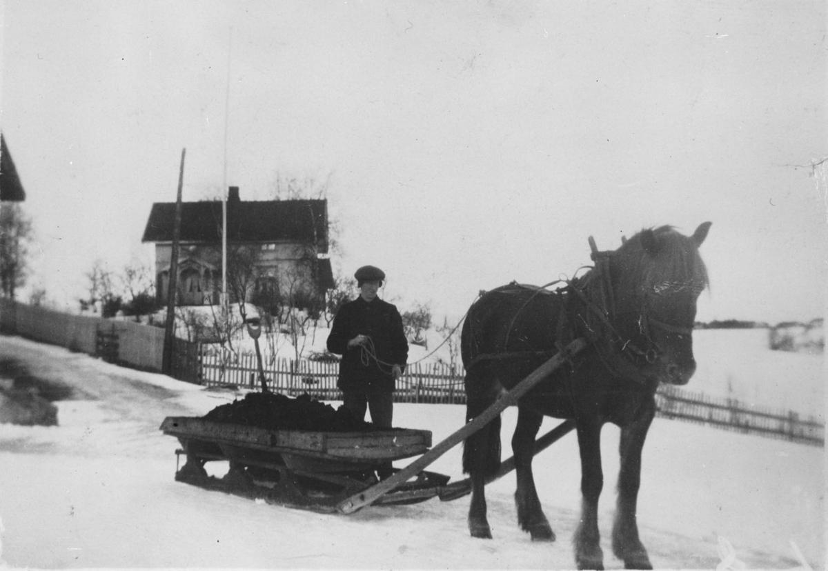 Alf Løchen driver med møkkakjøring på sledeføre.