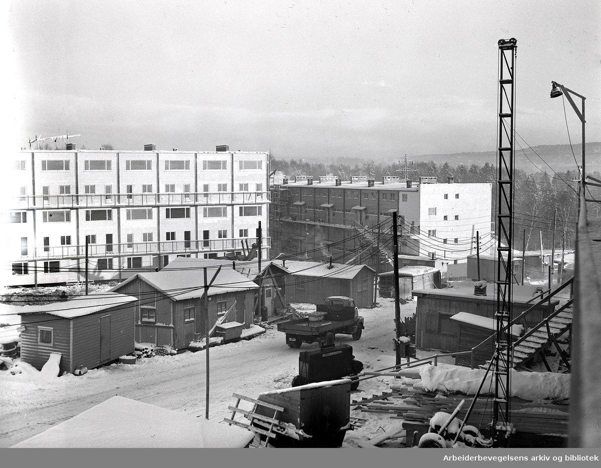 Boligblokker under bygging på Veitvet, Oslo,.januar 1955